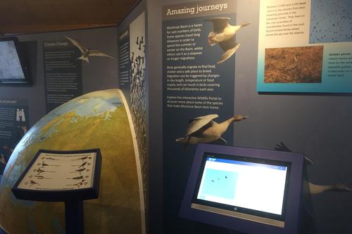 Montrose Basin exhibition design